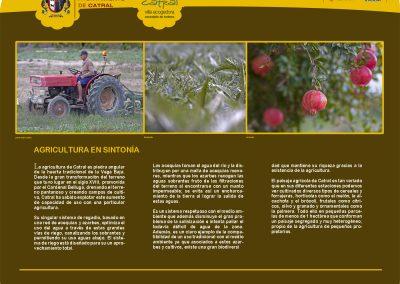 4 - Agricultura en sintonía